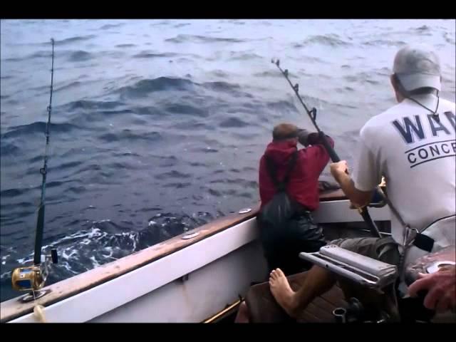 Foolish Pleasures Blue Marlin Release