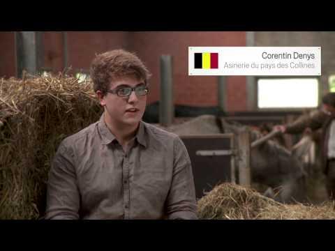 Asinerie du pays des Collines (Belgium)