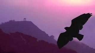 Panflöte - Romantic Instrumental / mehr als 2 Stunden Pan Flöte Instrumental Musik