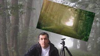 Außergewöhnliche Fotos bei Nebel - so wird es gemacht!