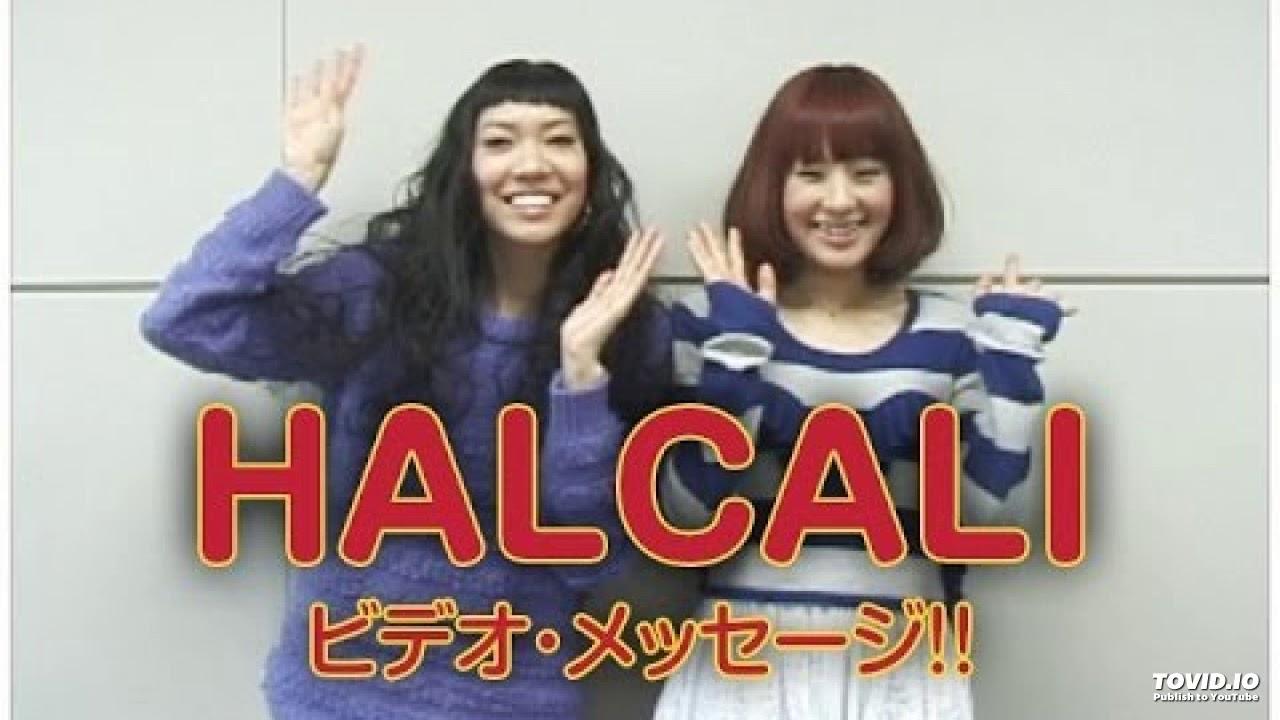 halcali lights camera action