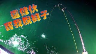 基隆大統船釣這次釣魚差一點點被乾杯Taiwan go fishing
