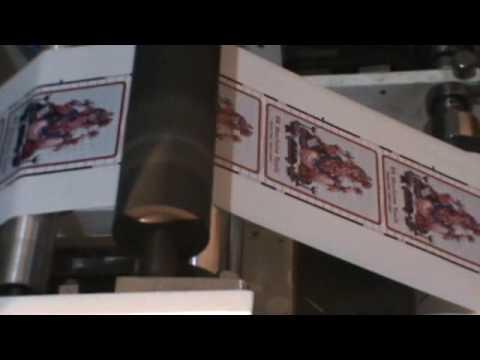 Intermittent Printing Machine