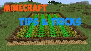 Minecraft - Tips and Tricks 1.8 : Episode 2 :: Farming
