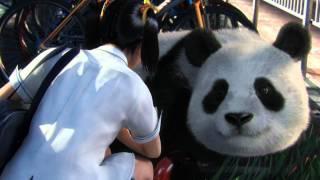 TEKKEN BLOOD VENGEANCE【Xiaoyu&Panda】