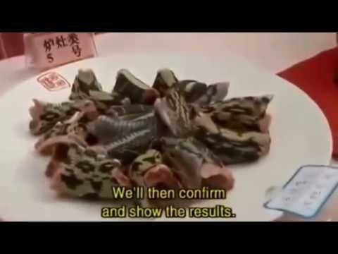 Çinlilerin canlı yılan keyfi