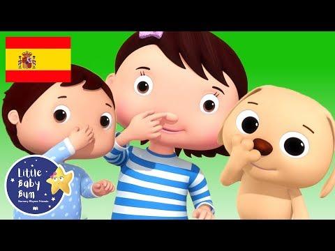Canciones Infantiles   Colores y las Acciones   P. 2   Dibujos Animados   Little Baby Bum en Español