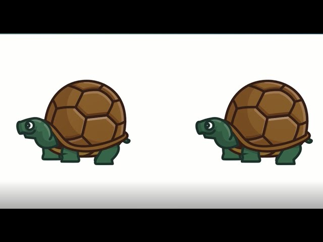 The Tale of Two Turtles