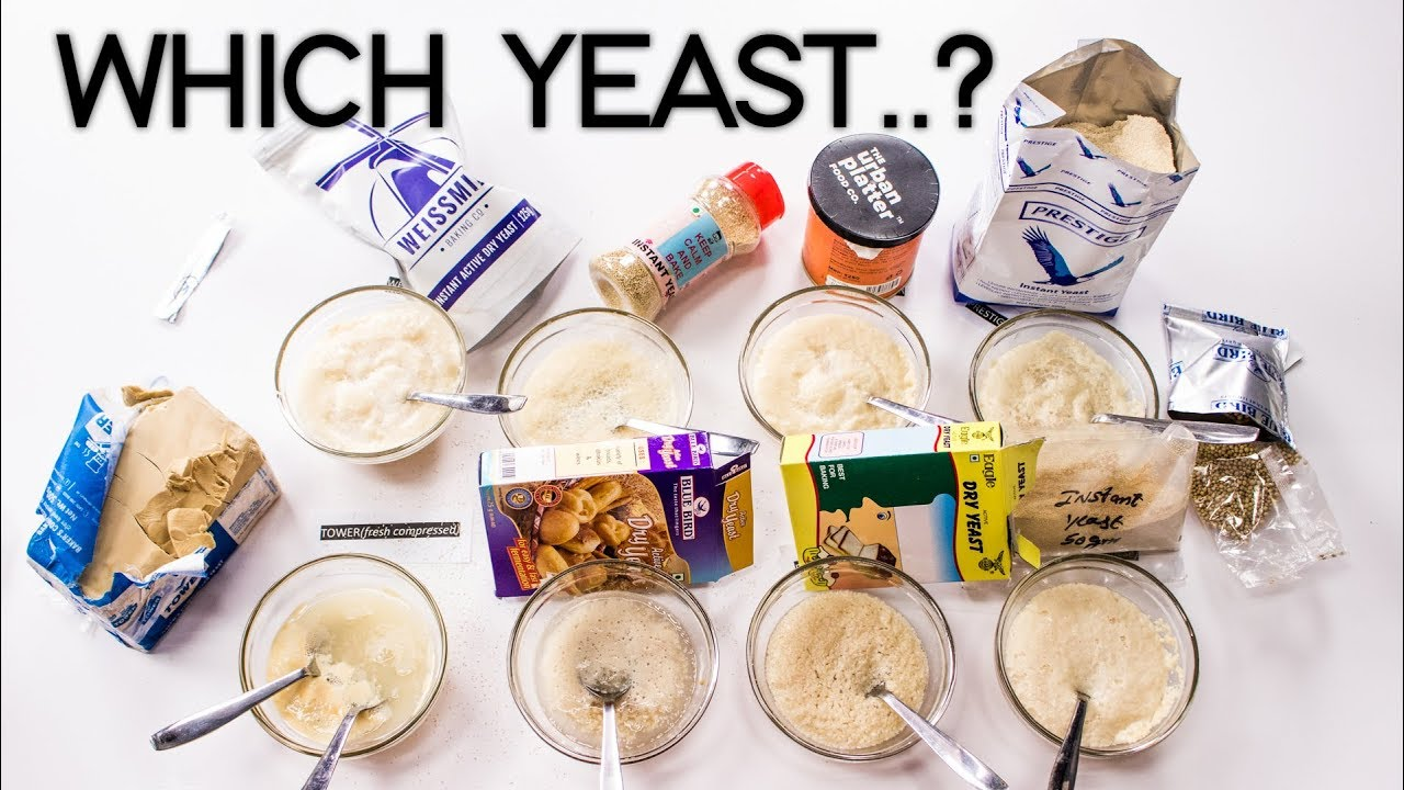 types of yeast in india dry active instant and fresh yeast