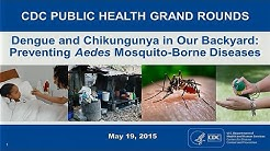 Dengue and Chikungunya in Our Backyard: Preventing Aedes Mosquito-Borne Diseases