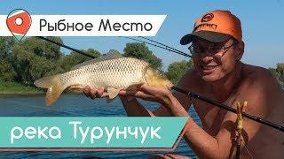 ДИКИЙ САЗАН НА ФІДЕР! Рибалка в задоволення на річці Турунчук. Рибне місце.