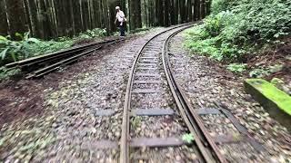 阿里山森林鐵路二萬平~48號神隱少女隧道實景