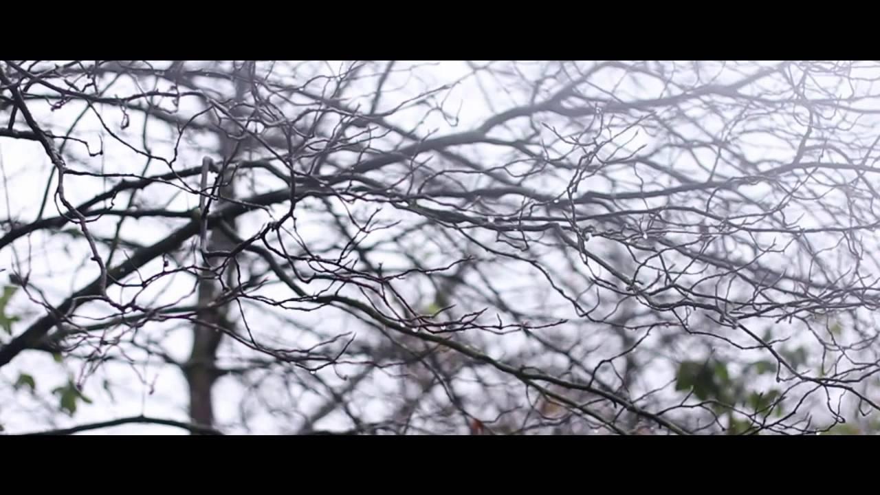 Canon EOS 60D HD Video Test Shot - First Snowfall