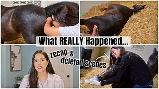 What REALLY Happened... Birth Vlog RECAP + DELETED SCENES | My Pregnant Horse Pt.14