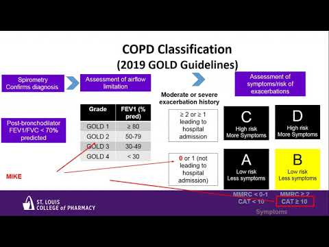 A Brief Update on the 2019 COPD Guidelines