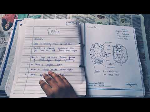 Zoology Notes For Bsc Pdf Download Bsc Syllabus