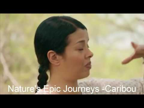 Nature's Epic Journeys - Caribou  01Ep02