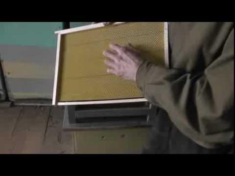 смотреть видео пчеловодство хранение суши от вредителей