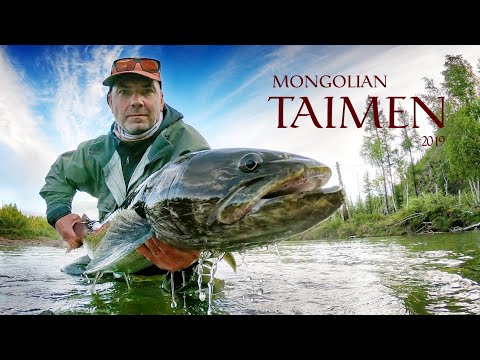 Fishing Trip For Taimen - Mongolia'19