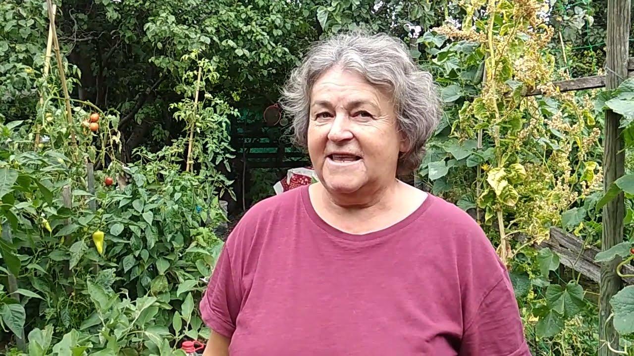 Jutka mama kertje augusztusban