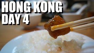 Hong Kong Food Travel - Day 4 - Incredible Day Trip TAI O Fishing VIllage