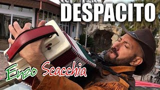DESPACITO (Enzo Scacchia CAMPIONE DEL MONDO DI ORGANETTO) Luis Fonsi - Despacito ft. Daddy Yankee