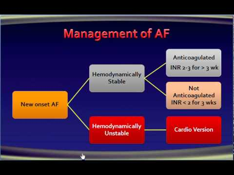 8 atrial fibrillation Management