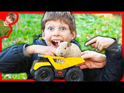 Dump Trucks for Kids Haul Axel and Daddy's NEW PET!