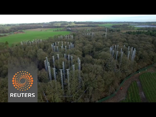 British forest pumped full of CO2 to test tree absorption