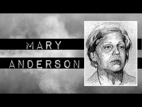 MARY ANDERSON │ INTO THE COLD