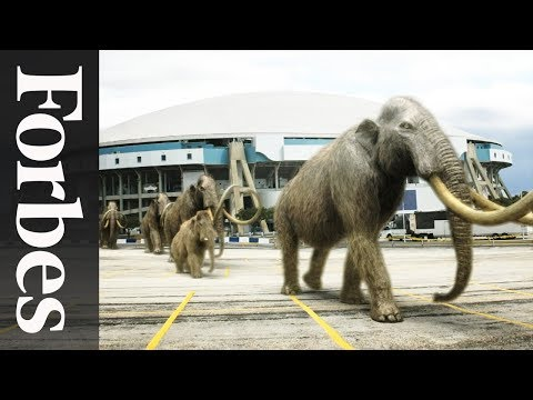 Billion-Dollar Baby: Resurrecting the Mammoth