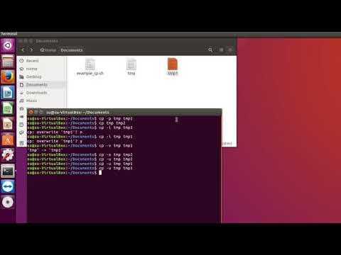 Как копировать файлы в linux через терминал