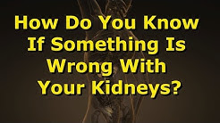 How Do You Know If Something Is Wrong With Your Kidneys?