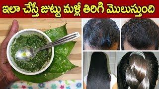 ఇలా చేస్తే మీ జుట్టు తిరిగి మొలుస్తుంది I Hair Re Growth Tips in Telugu I Everything in Telugu