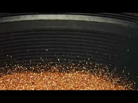 Goria groove bumbum de ouro