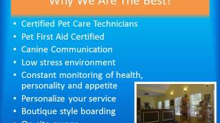 Take A Tour - Oxford Mississippi's Full Service Pet Resort & Spa
