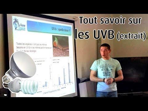 Extrait du cours sur les UVB - formation CDC