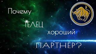 ПОЧЕМУ ТЕЛЕЦ ХОРОШИЙ ПАРТНЁР