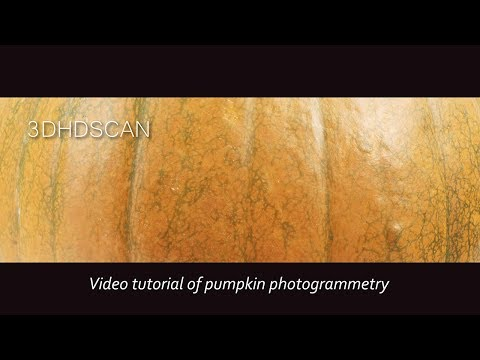 Video tutorial of pumpkin photogrammetry