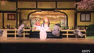 市川團十郎という歌舞伎界の巨星がこの世を去り、市川宗家の大名跡を襲...