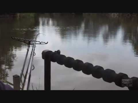Feeder Fishing - Dents Fishery (spinney)