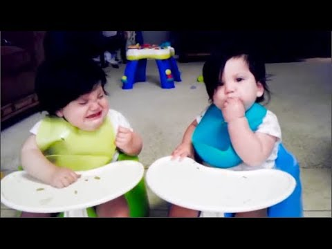Twins Baby Arguing  OVER EVRYTHING -  Funny Babies and Pets -  Youtube