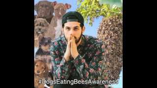 #DogsEatingBeesAwareness Day With Borgore