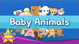Kids vocabulary - Baby Animals - Learn English for kids - English educational video