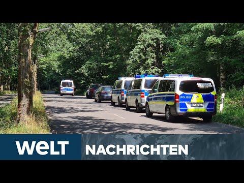 WELT NEWS STREAM: Serienvergewaltiger gefasst - Festnahme nach erneuter Tat bei Potsdam
