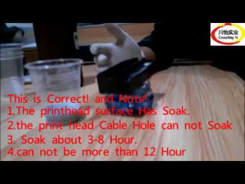 Soak Method to Repair blocked Clog Epson DX5 DX7 R1390 Printhead