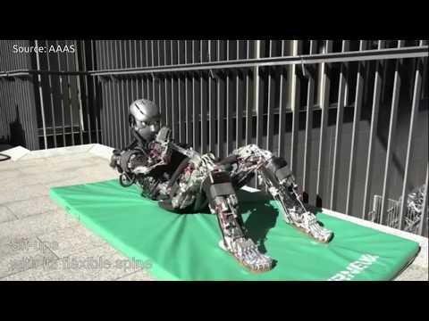 "Japan's Human Mimetic Humanoid Robots ""Kenshiro & Kengoro"" follow Human anatomy"
