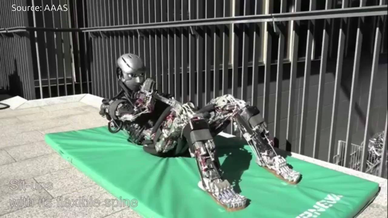 Japan's Human Mimetic Humanoid Robots