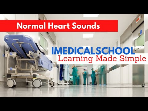 Heart Murmurs: Normal heart Sounds