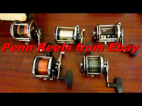 Penn Conventional Fishing Reels From Ebay